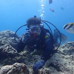 2017 Okinawa Day5 Cape Maeda Diving