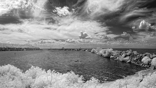 landscape calm 03duckseidersscotersmergansers cloud water bird sky ©edrosack sign harbor jetty lake cloudy sherwood wiscosin usa monochrome panorama bw infrared ir