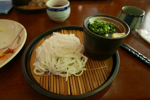 shosukechaya029