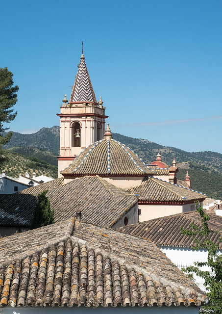 Andalusian roofs.