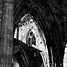 L2017_4557 - Tintern Abbey, Monmouthshire, August 27, 2017
