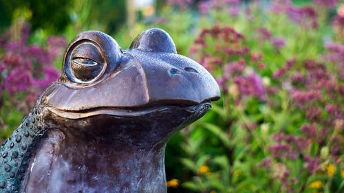 sculpture morning sertomapark outdoorcampus sunrise statue bronze siouxfalls dawn nature outdoors park southdakota minnehahacounty unitedstates sd frog industar502 индустарindustar502