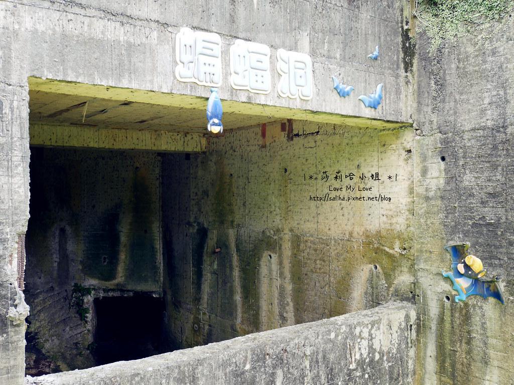 台北信義區一日遊景點和興炭坑蝙蝠洞 (6)
