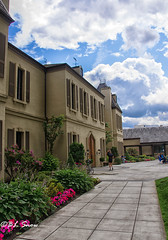 St. Michelle Winery