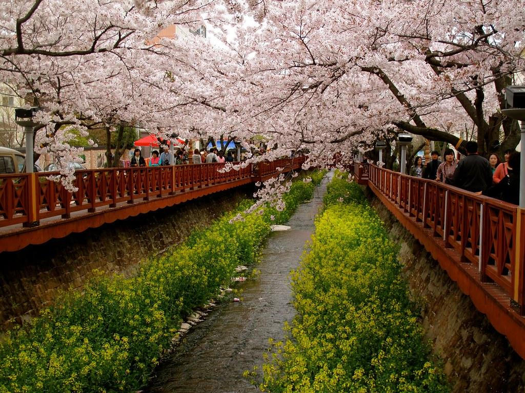 Gambar Wallpaper Pemandangan Jepang - Kumpulan Wallpaper