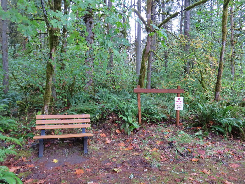 Newer looking bench