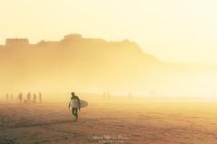 La soledad del surfista