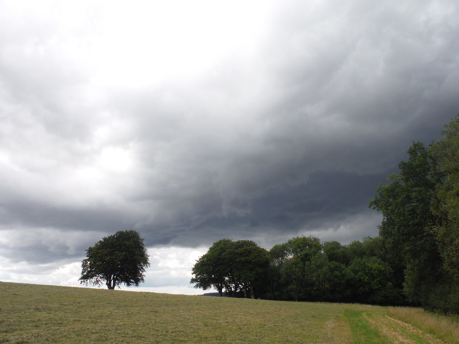 A Thunderstorm approaching East Dean SWC Walk 239 Halnaker to Chichester via Cass Sculpture Park and Goodwood