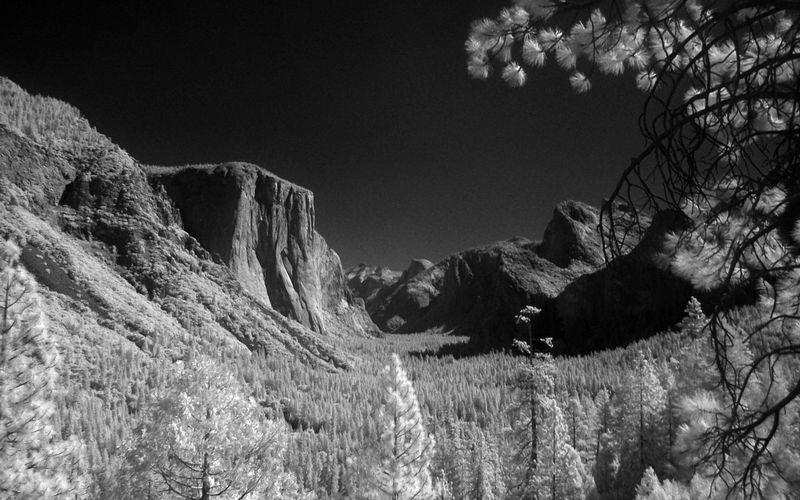 Voici comment prendre des photos infrarouges sans convertir votre appareil photo