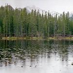 Mon, 08/07/2017 - 21:07 - Rocky Mountain National Park, Colorado - Nymph Lake