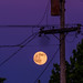 Full Moon and Pole by shifteleven