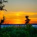 : Sunset at Koli