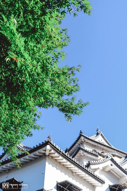 十年,京都四季 | 卷五 | 京都與我,有時還有關西 | 23