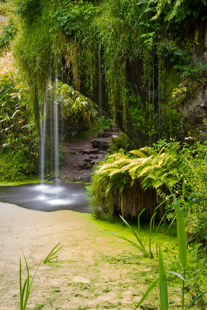 Ireland - Blarney - Castle gardens