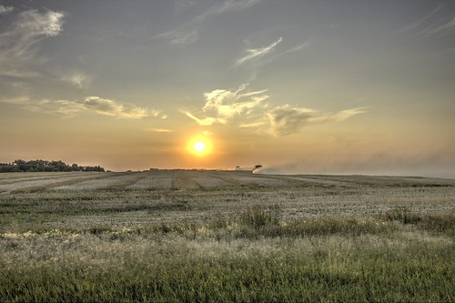 canadianprairies harvest combines sunset field rural country dust clouds sun canonrebelt7i canonefs1018mm crop