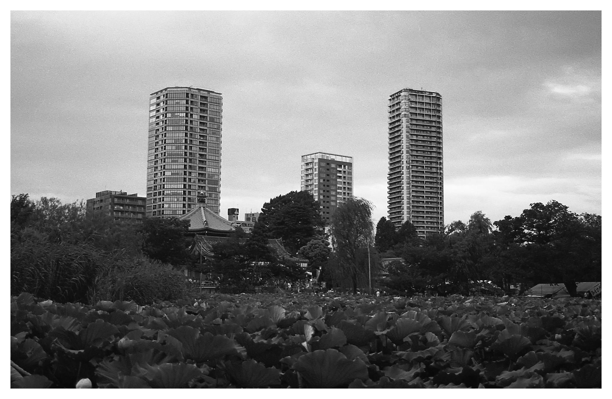km400_tokyo_uenopark5