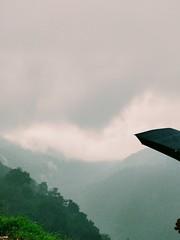 Rainy Hills