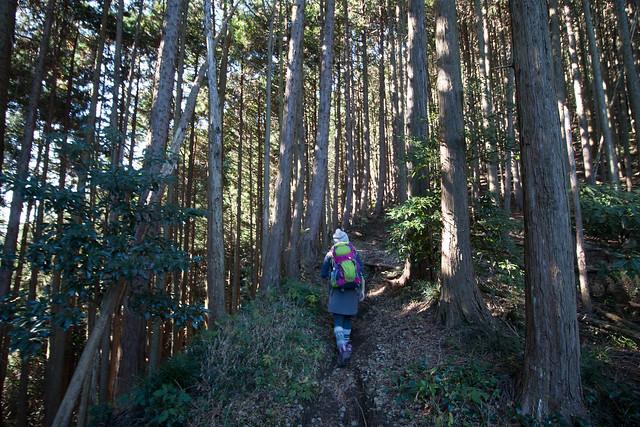 20161210-浜石岳-0158.jpg