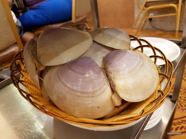 Large clams in basket