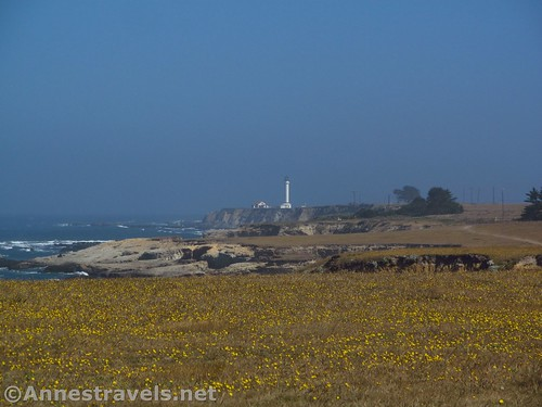 Point Arena Lighthouse from Point Arena-Stornetta National Monument, California
