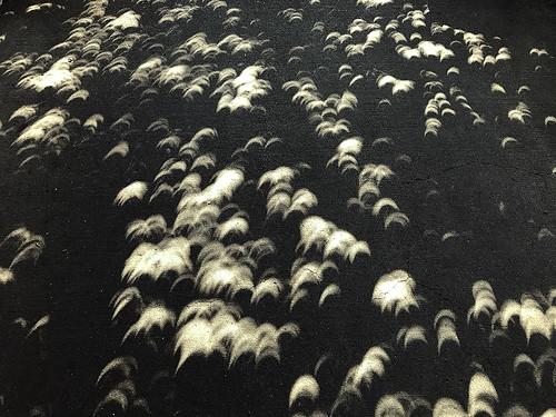 solar eclipse longview washington college communitycollege lowercolumbiacollege education highereducation eclipse17 2017 moon celestial cowlitzcounty stem wa science pnw 97percent total totality viewing nasa space solareclipse2017 solareclipseglasses glasses telescope