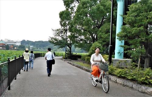 jp-tokyo 28-Ueno-Shinobazu (13)