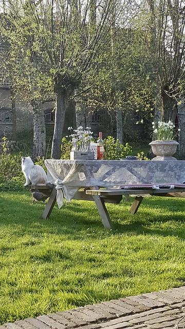 Picknicktafel met potten en wijn