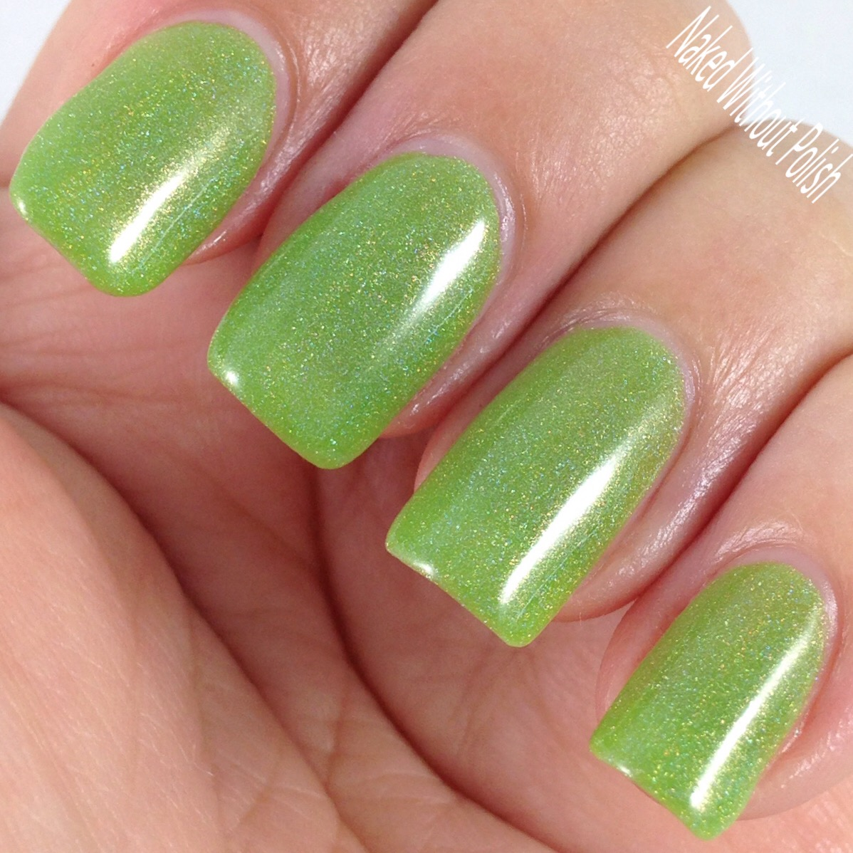LynBDesigns-Lime-and-Lime-Again-8