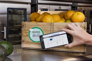 IBM Blockchain aborda la seguridad alimentaria mundial de la mano de compañías líderes en alimentación y distribución