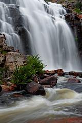 McKenzie Falls 3