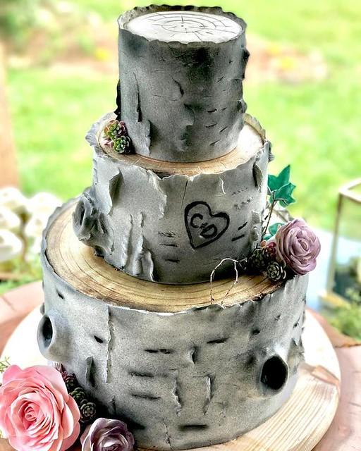 Birch Bark Inspired Cake by Sugar Cloud Baking Company