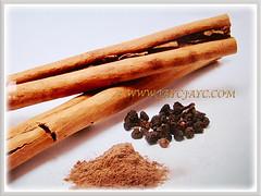 Pieces of dried cinnamon bark, ground cinnamon and seeds of Cinnamomum verum (Cinnamon, True Cinnamon, Ceylon/Cassia Cinnamon, Cinnamon Bark Tree, Kayu Manis in Malay), 17 Aug 2017