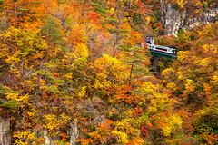 鳴子峽 Narukoonsen, Osaki, Miyagi Prefecture