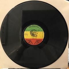 BUNNY WAILER:DUBD'SCO VOL.1(RECORD SIDE-B)