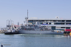 USS Scout MCM-8