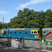 33201 at High Rocks on 26th August 2017