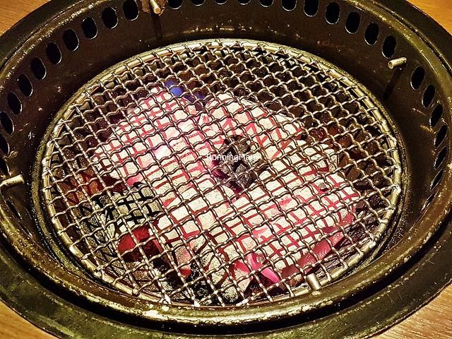 Binchotan Charcoal Grill