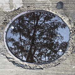 Manhole Cover Reflection