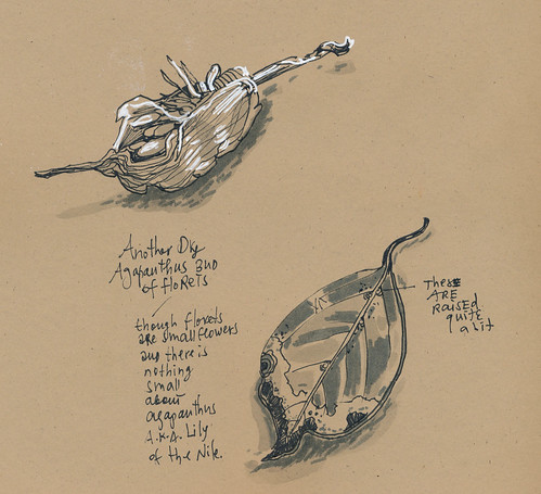 Sketchbook #106: Treasures8