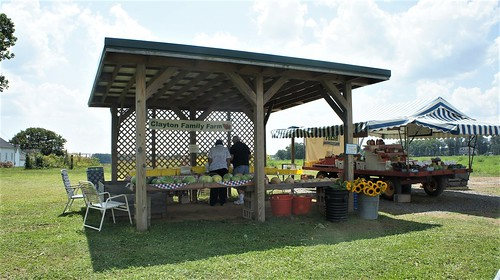 Clayton Family Farmstand, Freehold, NJ
