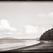 Lopez Island (Holga) by DRCPhoto