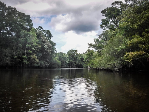 Lynches River with Lowcountry Unfiltered-183