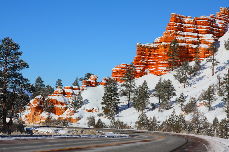 IMG_5448 Red Canyon