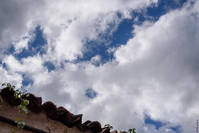 blu intenso, Nikon D750, AF-S Nikkor 50mm f/1.8G
