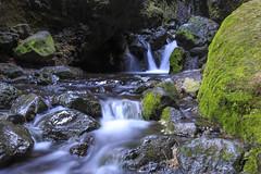 Icelandig cave creek Rauðfeldsgjá Gorge