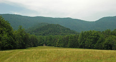 Cades Cove tectonic window & Blue Ridge (Great Smoky Mountains, Tennessee, USA) 19