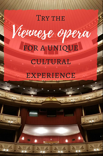 Try the Viennese opera for a unique cultural experience