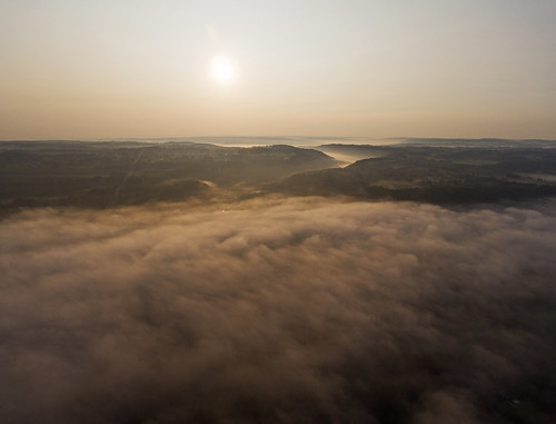 misty morning fog foggy life goodmorning peace peaceful nature sun sunrise valley marcellus cny canon dji drone tree lonely 2017 rural country newyork finger lakes fingerlakes