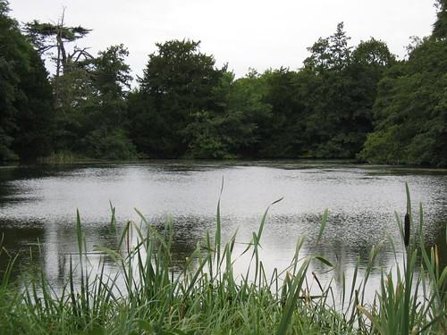 lake in woburn park