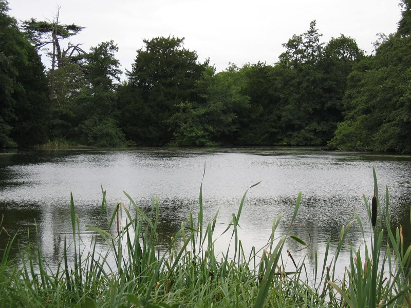 lake in woburn park